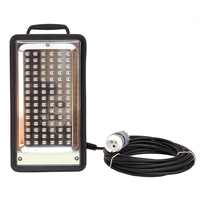 Phoenix LED working light 42V 30W